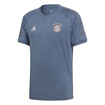 2018-2019 بايرن ميونيخ أديداس UCL التدريب قميص (الرمادي)