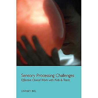 Sensorycznej przetwarzania wyzwania: Efektywnej pracy klinicznej z dzieci & Nastolatki (Norton Professional książka)