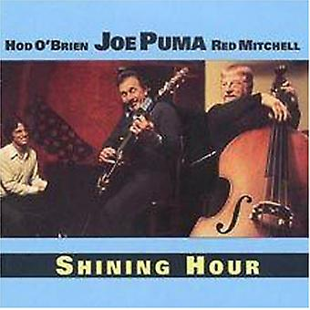 Joe Puma - skinnende time [CD] USA import