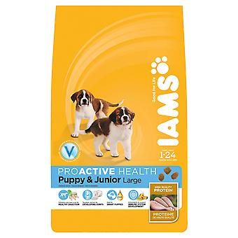 Iams Dog Puppy & Junior Large Breed 12kg