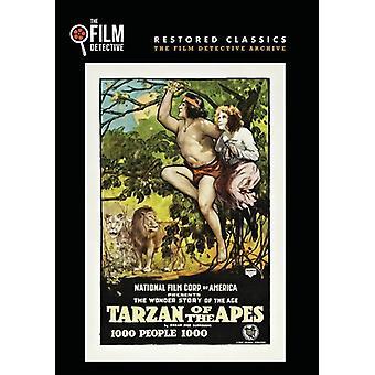 Tarzan of the Apes [DVD] USA import