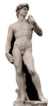 Michelangelo's David Statue - Lifesize karton gestanst / Standee