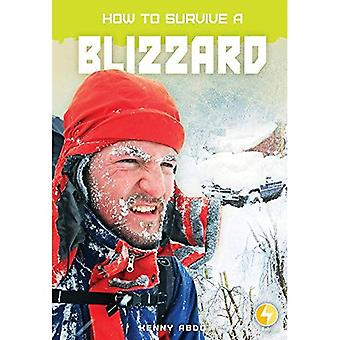 How to Survive a Blizzard (How to Survive)