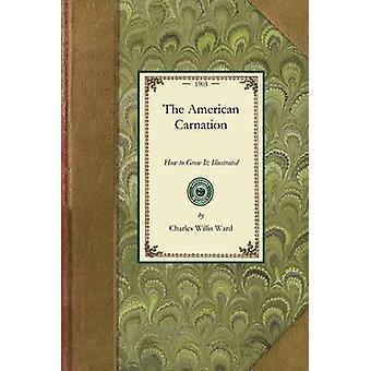 La Carnation américaine par Charles Willis Ward