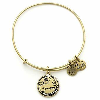 Alex et Ani Capricorne or bracelet A13EB01CARG