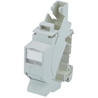 Red gris claro de salida DIN rail CAT 6A Telegaertner