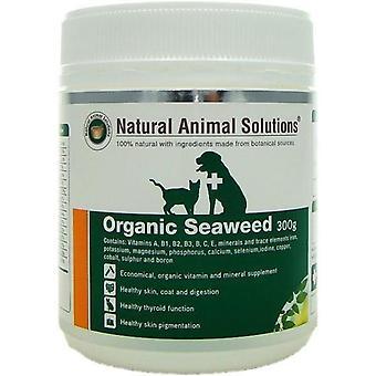 Organic Seaweed 300g