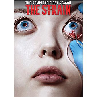 Strain: Season 1 [DVD] USA import
