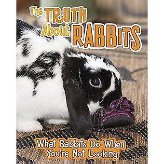 The Truth about Rabbits - What Rabbits Do When You're Not Looking by M