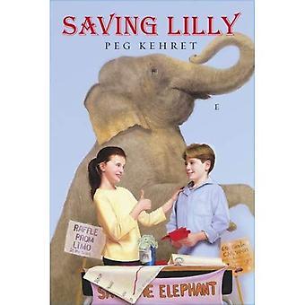 Spara Lilly
