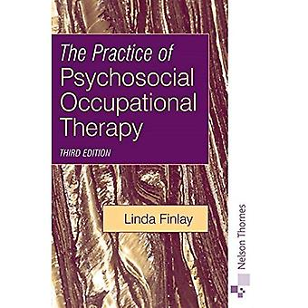 The Practice of Psychosocial Occupational Therapy Third Edition. (Mental Health Nursing & the Community)