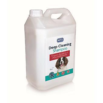 Shampoo de limpieza profunda rota 5L - uso de perros malolientes, grasiento y sucios
