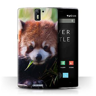 STUFF4 Case/Cover for OnePlus One/Racoon/Wildlife Animals