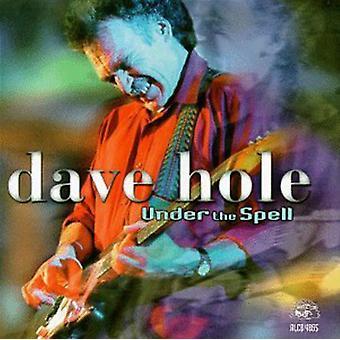 Dave Hole - importación de Estados Unidos bajo el hechizo [CD]