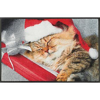 tvätt + torr matta sover kitty 50 x 75 cm smuts matta katt motiv