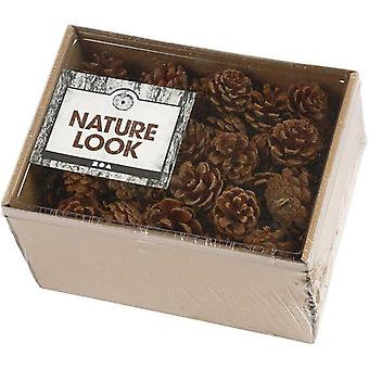 Box Real Pine or Fir Cones for Christmas Crafts - 80 Cones