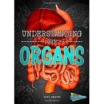 Verständnis unserer Organe (Gehirn, Körper, Knochen!)