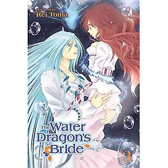 Vand Dragon bruden, Vol. 3 (Water Dragon bruden)