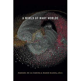 En verden av mange verdener