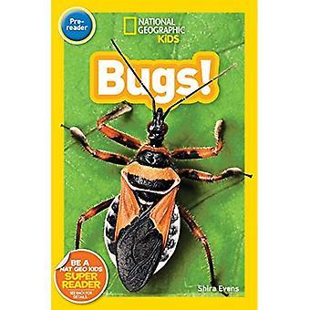 National Geographic Kids Readers: Bugs (Readers) (Readers)