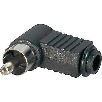 RCA connector Plug, right angle Number of pins: 2 Black BKL Electronic 072141/T 1 pc(s)