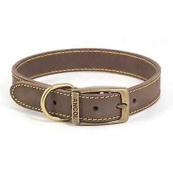Timberwolf Leather Collar Sable 19mm X36-46cm