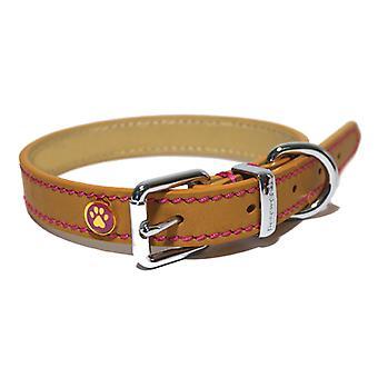 Luxury Leather Collar Tan 1 1/2