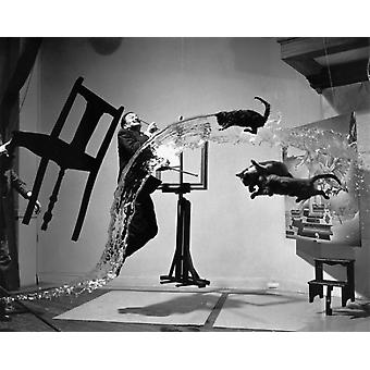 Dali Atomicus 1948 (Unretouched) Poster Print by McMahan Photo Archive (10 x 8)