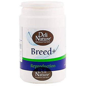 Deli Nature Complemento Breed + (Birds , Supplements)