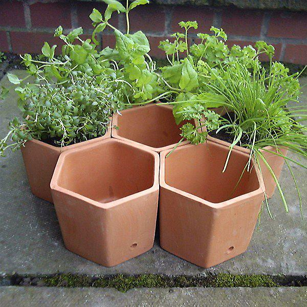 Terracotta Hexagonal Herb Garden Planter Set