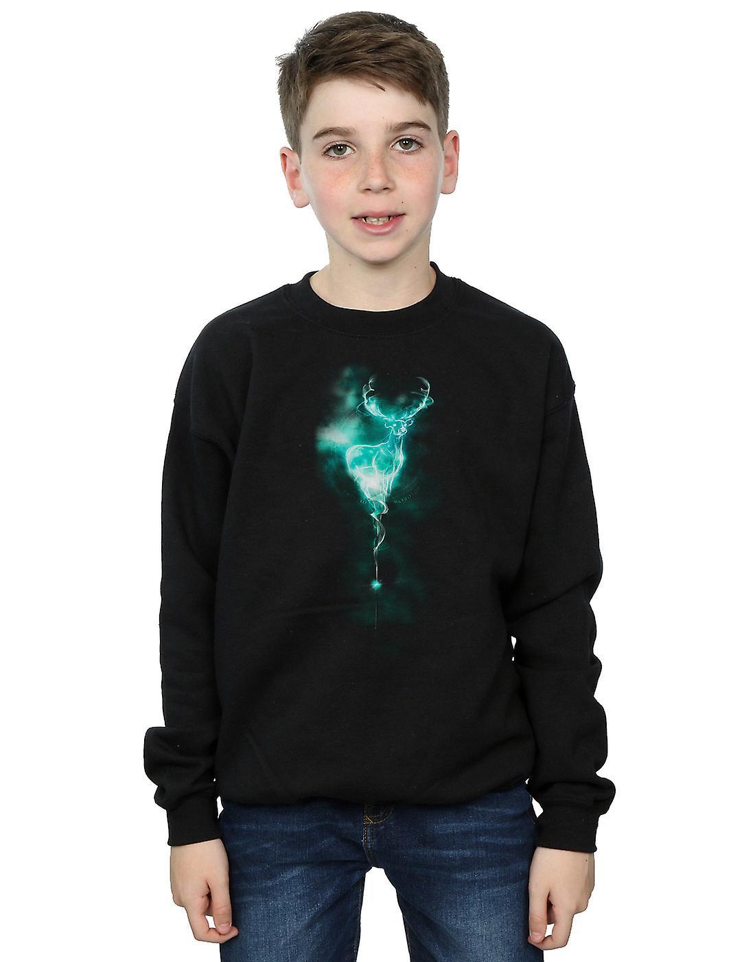 Harry Potter Boys Stag Patronus Mist Sweatshirt