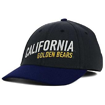 Cal Bears NCAA Nike Legacy 91 Dri-Fit Swoosh Flex Fitted Hat