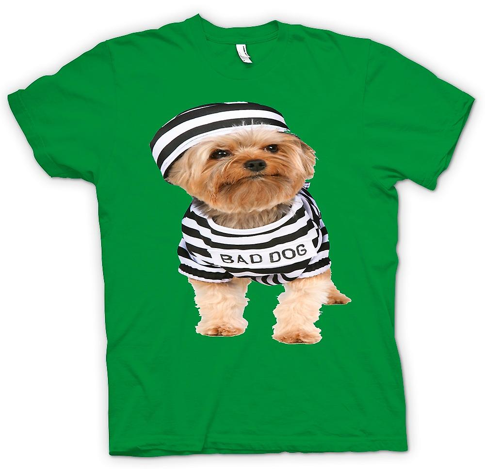 Mens T-shirt - Yorkshire-Terrier - böser Hund