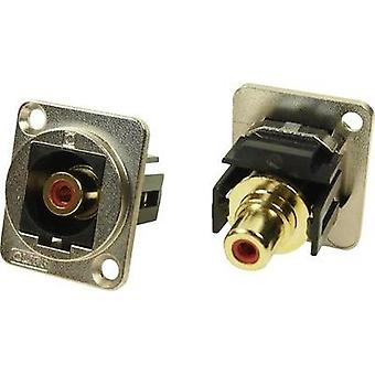 N/A Adapter, mount CP30230M Cliff Content: 1 pc(s)