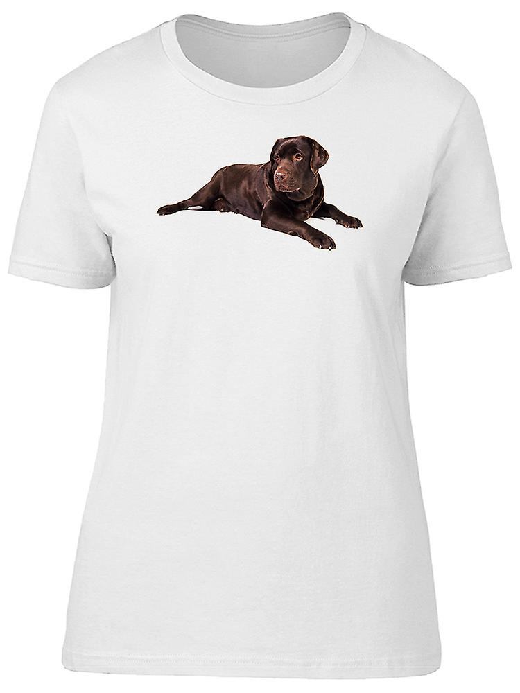 Brown Chocolate Labrador Dog Tee Women's -Image by Shutterstock