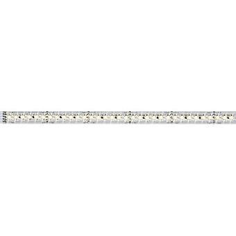 Paulmann LED strip extension + plug 24 V 50 cm Warm white MaxLED 1000 70571