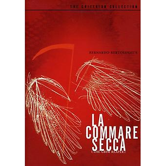 Commare Secca [DVD] USA import