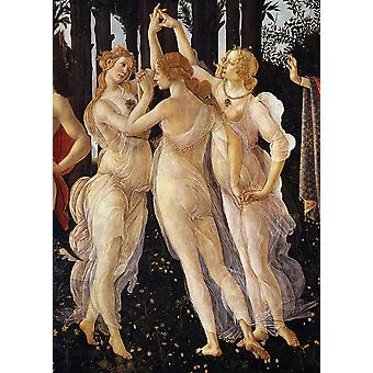 Sandro Botticelli - Three Graces in Primavera Poster Print Giclee