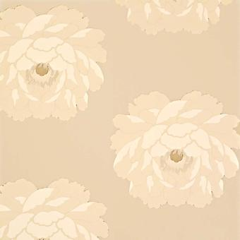 Sanderson Cream & Beige Wallpaper Roll - Floral Leora Design - Colour: DAMPLE102