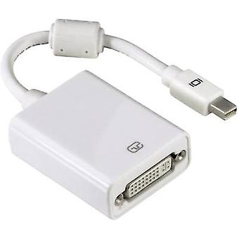 Hama DisplayPort / DVI Adapter [1x Mini DisplayPort plug - 1x DVI socket 29-pin] White incl. ferrite core