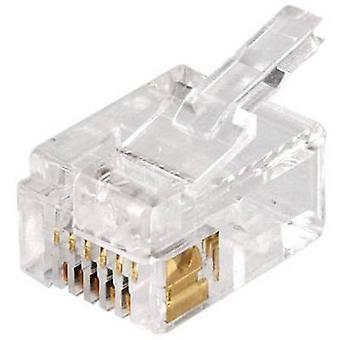 Modulare montierten Steckdose Stecker, geraden MPL6/6 Dez klar Econ verbinden MPL6/6 Dez 1 PC