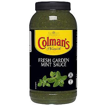 Colmans-Minze-Sauce