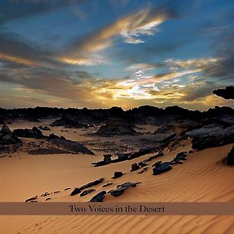 Perry Robinson & Burton Greene - deux voix dans le désert [CD] USA import