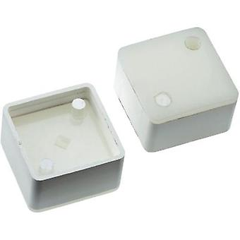 Switch cap White Mentor 2271.1206 1 pc(s)