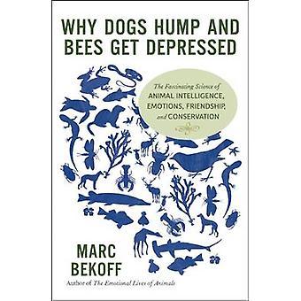Waarom honden bult en bijen krijgen depressief door Marc Bekoff