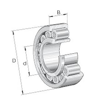 INA RSL183013-A-XL Radial Cylindrical Roller Bearing