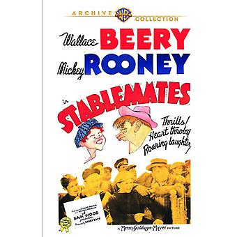 Stablemates [DVD] USA importieren