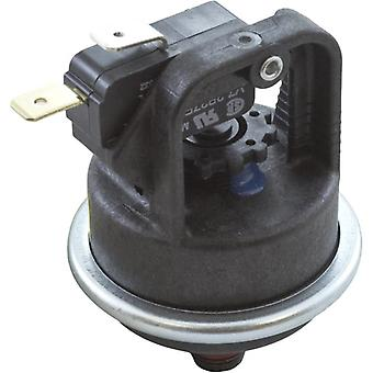 Pentair 42001-0060S Water Pressure Switch
