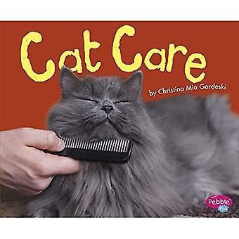 Cuidado do gato (os gatos, gatos, gatos)