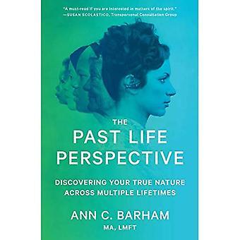 Tidigare livsperspektiv: Upptäck din sanna natur över flera livstider